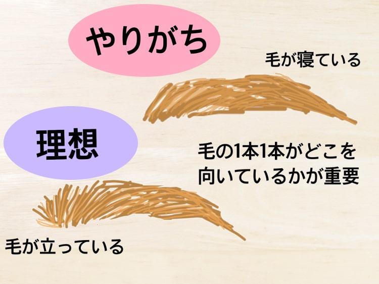 眉メイクのコツのイラスト説明